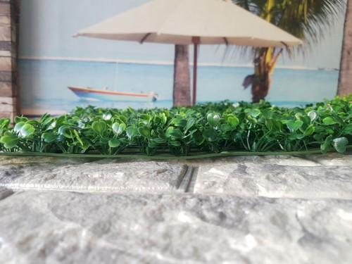 Tại sao nên chọn cỏ nhựa trang trí tường?, 78571, Tấm Ốp 3D - Giấy Dán Tường - Sàn Gỗ, Blog MuaBanNhanh, 17/01/2018 14:03:34