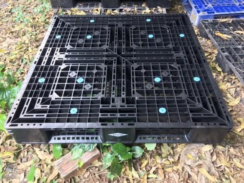 Pallet nhựa màu đen TPHCM, 76920, Pallet Nhựa Cũ Giá Rẻ, Blog MuaBanNhanh, 28/12/2017 11:33:08