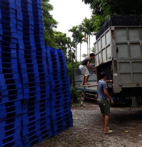 Mua pallet nhựa, 75495, Pallet Nhựa Cũ Giá Rẻ, Blog MuaBanNhanh, 28/12/2017 11:55:49