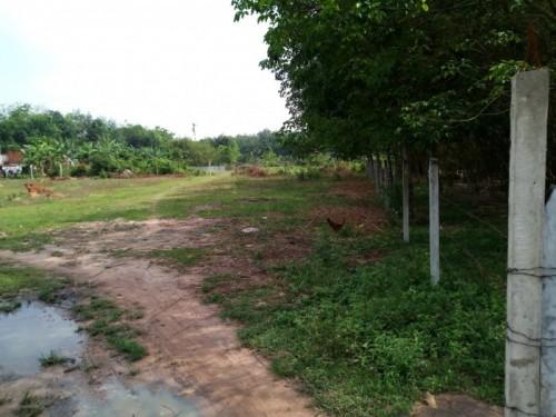 Những lưu ý khi mua bán đất vườn Củ Chi, 80984, Nguyễn Thành Châu, Blog MuaBanNhanh, 09/05/2018 15:26:21