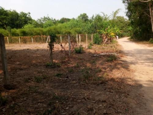 Tình hình giá đất Củ Chi: đang trong cơn sốt, 80987, Nguyễn Thành Châu, Blog MuaBanNhanh, 01/06/2018 16:54:52