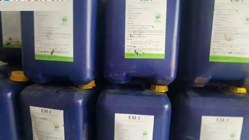 Một số lưu ý sử dụng chế phẩm vi sinh trong nuôi tôm, 83854, Lê Vân, Blog MuaBanNhanh, 30/07/2018 17:08:40
