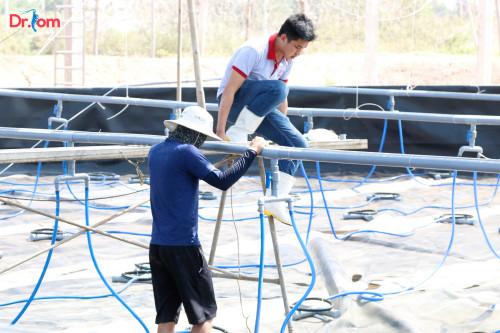 Tìm hiểu về kỹ thuật lót bạt ao nuôi tôm để đạt hiệu quả cao, 85367, Đinh Hùng, Blog MuaBanNhanh, 12/09/2018 09:10:54
