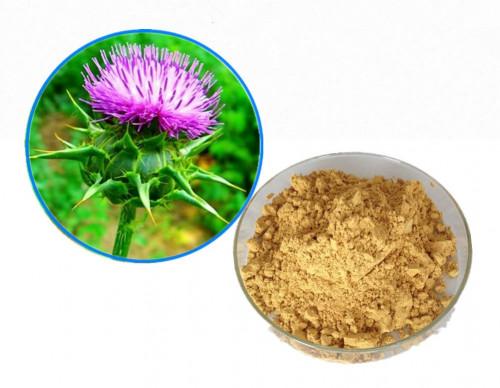 Tinh chất Silymarin bảo vệ lá gan cho bạn - Quà tặng từ thiên nhiên, 85909, Mediphar Usa, Blog MuaBanNhanh, 29/09/2018 09:59:05