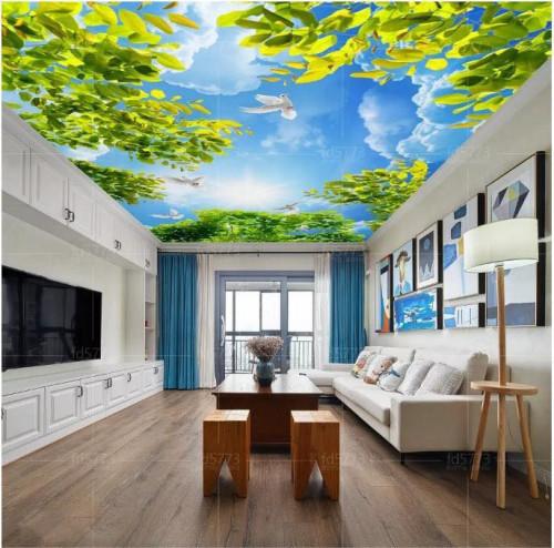 Trần xuyên sáng là gì? có nên sử dụng trần xuyên sáng không?, 86391, Nguyễn Thanh Trung, Blog MuaBanNhanh, 17/10/2018 10:13:22