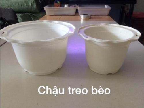 Mua chậu hoa nhựa Thakico TPHCM, 86809, Hứa Minh Châu, Blog MuaBanNhanh, 30/10/2018 15:37:25