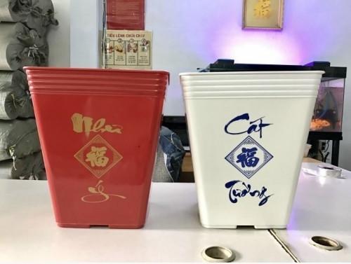 Nơi bán chậu nhựa trồng cây uy tín với chi phí phù hợp cho mọi nhà, 86810, Hứa Minh Châu, Blog MuaBanNhanh, 30/10/2018 15:37:17