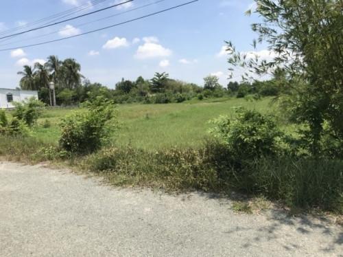 Những lý do nên mua đất Củ Chi, 86932, Nguyễn Minh Tuấn, Blog MuaBanNhanh, 02/11/2018 11:41:09