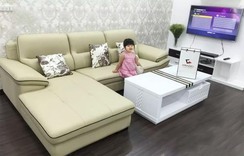 Mua ghế sofa gỗ hay ghế sofa nệm cho phòng khách gia đình?, 88689, Đồ Gỗ Giang Phát, Blog MuaBanNhanh, 27/12/2018 10:06:06