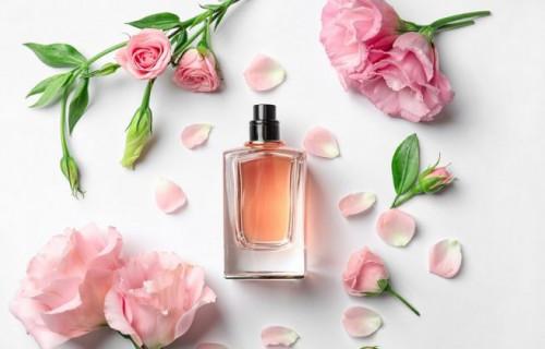 Cách chọn nước hoa cho phụ nữ thích hợp nhất, 88919, Hân Hân, Blog MuaBanNhanh, 05/01/2019 11:10:51