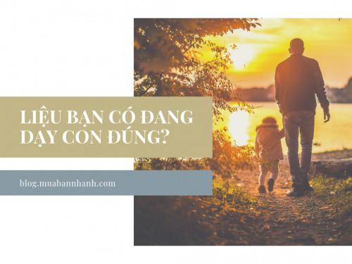 Nuôi dạy con lớn lên tự tin, trưởng thành: điều quan trọng nhất là giúp trẻ học tốt các quy tắc, có thói quen sống và có mục tiêu cuộc sống riêng, 89114, Trương Võ Tuấn Mbn, Blog MuaBanNhanh, 15/01/2019 10:15:21