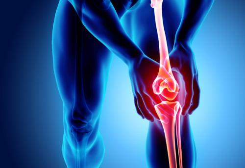 Xương khớp tạo ra từ hoạt chất nào ? Làm gì để xương chắc khỏe ?, 89395, Mr Vũ, Blog MuaBanNhanh, 28/01/2019 15:19:55