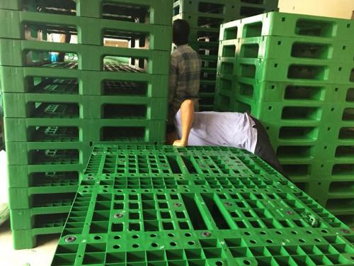 Đại lý pallet nhựa, pallet nhựa cũ giá rẻ Tphcm, 89509, Pallet Nhựa Cũ Tphcm, Blog MuaBanNhanh, 13/02/2019 10:03:16