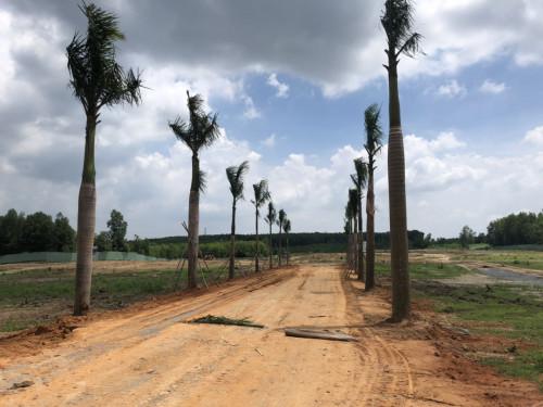 Hấp dẫn dự án Long Thành Airport City, 91741, Hữu Quyền, Blog MuaBanNhanh, 26/06/2019 15:15:13