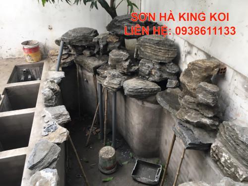 Cách nuôi cá Koi trong hồ xi măng, 93902, 0843977788, Blog MuaBanNhanh, 19/02/2020 18:38:05