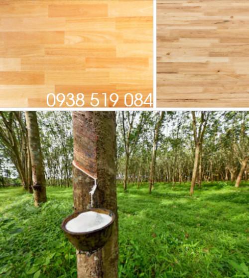 Gỗ cao su giá kho - nội thất gỗ cây cao su giá sỉ Quảng Ngãi, 94009, Trần Nguyễn Phương Linh, Blog MuaBanNhanh, 11/02/2020 14:09:12