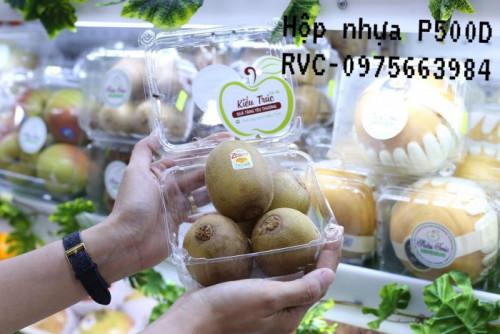 Hộp nhựa đựng 500g trái cây P500D, 95859, Letuyetnhi, Blog MuaBanNhanh, 29/10/2020 10:41:37