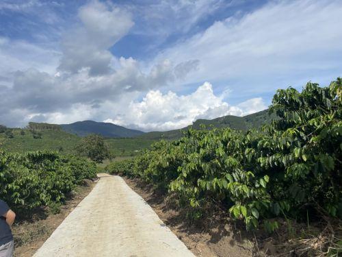 Bán đất Di Linh Miss Happy Land Nhà đầu tư bất động nhà đất Di Linh Lâm Đồng, 96977, Đất Nền Đức Trọng, Blog MuaBanNhanh, 21/05/2021 11:34:17