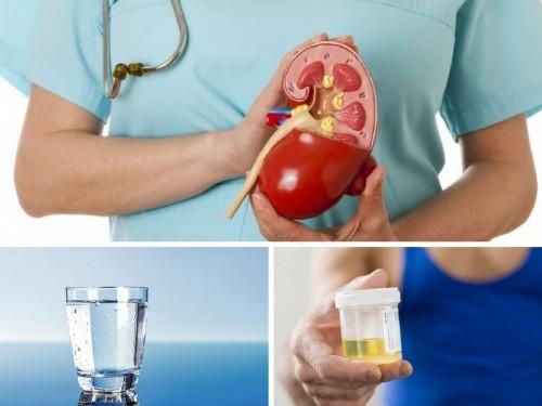 [Cảnh Báo Sức Khỏe] Kiểm tra bệnh thận hư chỉ mất 1 phút và 1 ly nước sạch, 75913, Phương Thảo, Blog MuaBanNhanh, 28/11/2017 15:25:11
