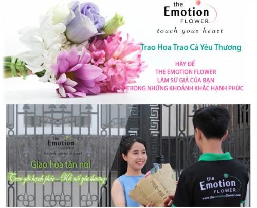 Giới thiệu Shop hoa tươi The Emotion Flower TPHCM, 82959, Phạm Nhã My, Blog MuaBanNhanh, 09/07/2018 09:21:45