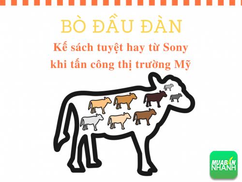 Kế sách 'Bò đầu đàn' - Thắng giặc phải bắt tướng: Bài học kinh doanh khi Sony thâm nhập thị trường Mỹ, 78089, Huyền Nguyễn, Blog MuaBanNhanh, 28/12/2017 12:19:45