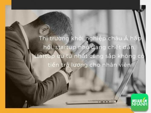 Thị trường khởi nghiệp châu Á hấp hối, startup nhỏ đang chết dần, startup ưu tú nhất cũng sắp không có tiền trả lương cho nhân viên, 78088, Huyền Nguyễn, Blog MuaBanNhanh, 28/12/2017 12:19:45