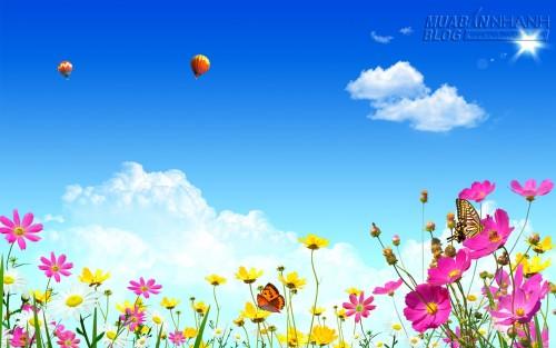 Có một mùa hoa ở lại, 34093, Bích Huyền, Blog MuaBanNhanh, 13/04/2015 18:52:36