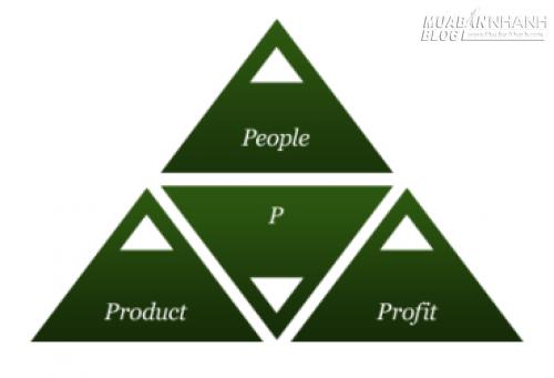 3P – Những điều nhà đầu tư thật sự quan tâm, 34754, Hồng Khanh, Blog MuaBanNhanh, 17/04/2015 09:54:14