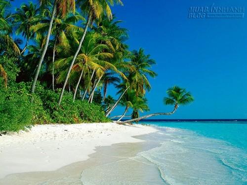 Bãi Dài đảo Ngọc– Bãi biển hoang sơ nhất thế giới, 34916, Minh Thiện, Blog MuaBanNhanh, 17/04/2015 17:11:25