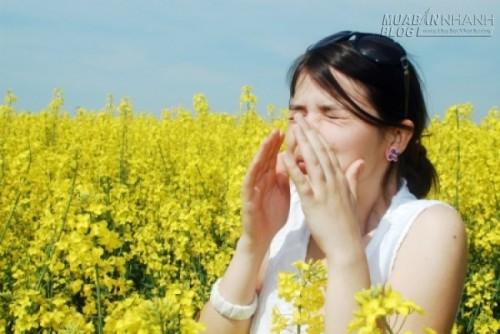 Giảm triệu chứng dị ứng bằng các cách tự nhiên