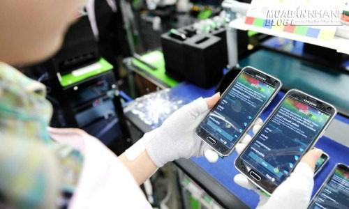 Doanh nghiệp nội lo khó xin việc ở dự án Samsung, 40800, Lavender, Blog MuaBanNhanh, 16/06/2015 09:25:29