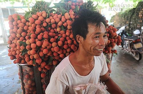 Kinh tế 6 tháng bớt lạc quan vì nông nghiệp, nhập siêu, 42825, Lavender, Blog MuaBanNhanh, 02/07/2015 08:50:32