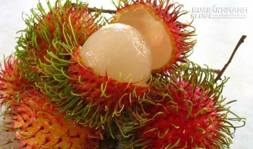 Mẹo chọn chôm chôm dày cùi, ngon ngọt, dễ tróc, 45776, Nguyên Khang, Blog MuaBanNhanh, 30/03/2020 11:04:06