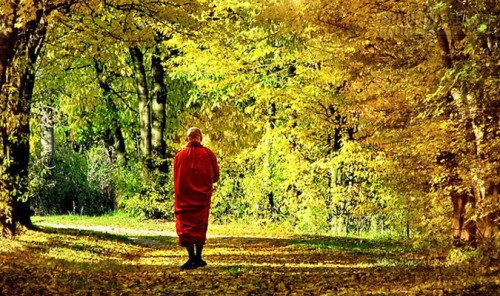 Tu hành không phải là buông bỏ, mà là để hiểu lẽ hoán đổi…, 46874, Nguyên Khang, Blog MuaBanNhanh, 07/08/2015 10:56:02