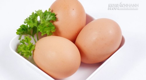 3 quả trứng mỗi ngày, vẫn tốt, 49417, Nguyễn Thu Hương , Blog MuaBanNhanh, 28/08/2015 14:55:55