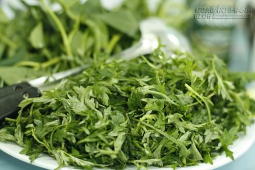 Bài thuốc chữa bệnh xương khớp hiệu quả từ rau ngải cứu, 53943, Nguyễn Thu Hương , Blog MuaBanNhanh, 13/10/2015 07:51:56