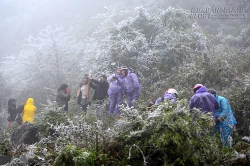 Khách du lịch lên Sapa ngắm băng tuyết, 60892, Nguyễn Thu Hương , Blog MuaBanNhanh, 18/12/2015 11:29:40