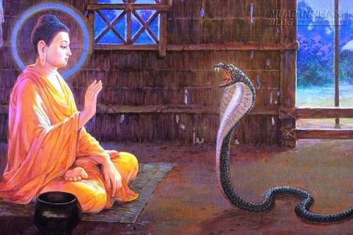 Nói xấu người khác và quả báo khôn lường, 68488, Nguyễn Thu Hương , Blog MuaBanNhanh, 02/04/2016 09:43:05