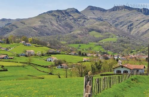Những thành phố màu sắc ở xứ Basque, 69276, Lavender, Blog MuaBanNhanh, 14/04/2016 14:00:18