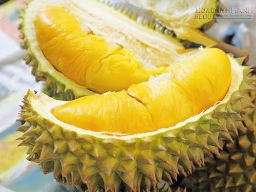Sầu riêng và những lưu ý đặc biệt khi ăn, 71798, Nguyễn Thu Hương , Blog MuaBanNhanh, 30/03/2020 10:42:34