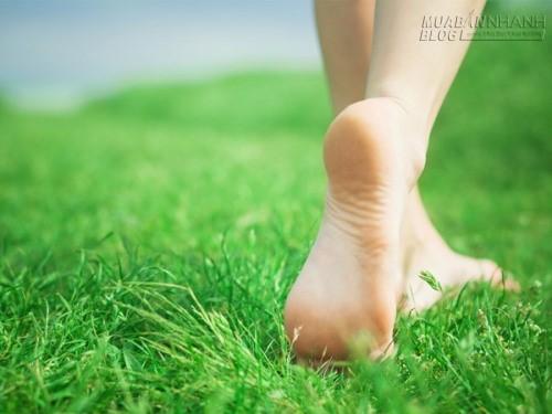 Nếu bạn có thói quen đi chân trần mỗi ngày điều gì sẽ xảy ra?, 71842, Nguyễn Thu Hương , Blog MuaBanNhanh, 21/05/2016 12:47:15