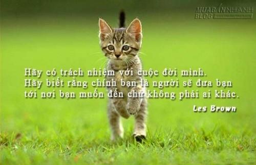 7 câu chuyện vui thâm thúy cho cuộc sống của bạn dễ dàng hơn, 72461, Lavender, Blog MuaBanNhanh, 30/05/2016 15:55:13
