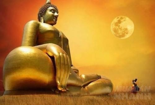 14 câu trả lời của Đức Phật giúp bạn nhận ra hướng đi cuộc đời, 73258, Lavender, Blog MuaBanNhanh, 10/02/2017 13:28:51