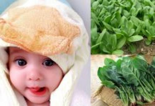 Đây là những loại rau có hàm lượng canxi tốt hơn sữa tươi, mẹ nên bổ sung cho con ăn hàng ngày, 74944, Lavender, Blog MuaBanNhanh, 09/04/2017 12:38:20