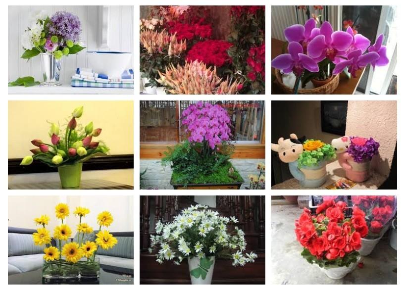 Phương pháp giữ hoa tươi lâu hơn