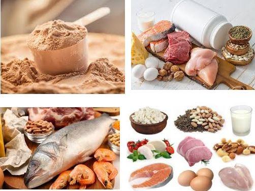 Protein và chất béo lành mạnh