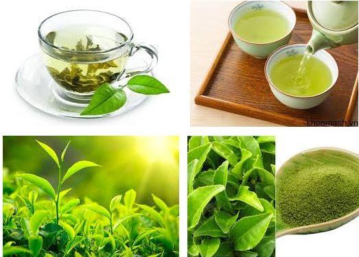 Trà xanh cung cấp các chất chống oxy hóa và giúp cơ thể đốt cháy chất béo nhanh hơn