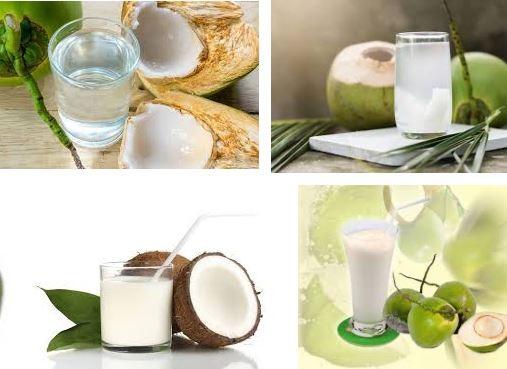 Nước dừa là thức uống ngon lành được nhiều người yêu thích
