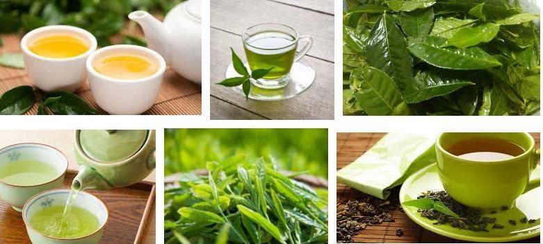 Bí quyết giảm cân bằng trà xanh tươi và chanh.