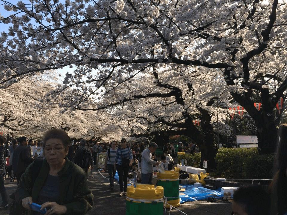 9 cách tiêu tiền thông minh của người Nhật bạn nên học hỏi